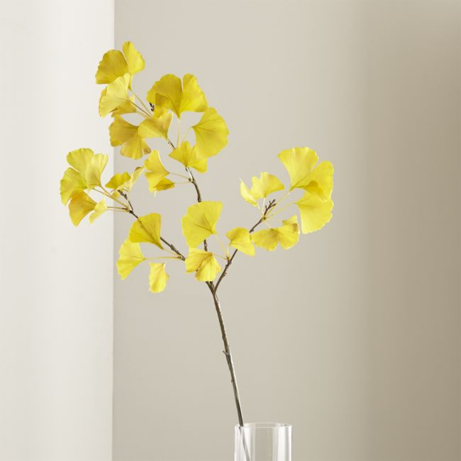 Gingko Stem Yellow - Reg $24.95 Sale $10.50