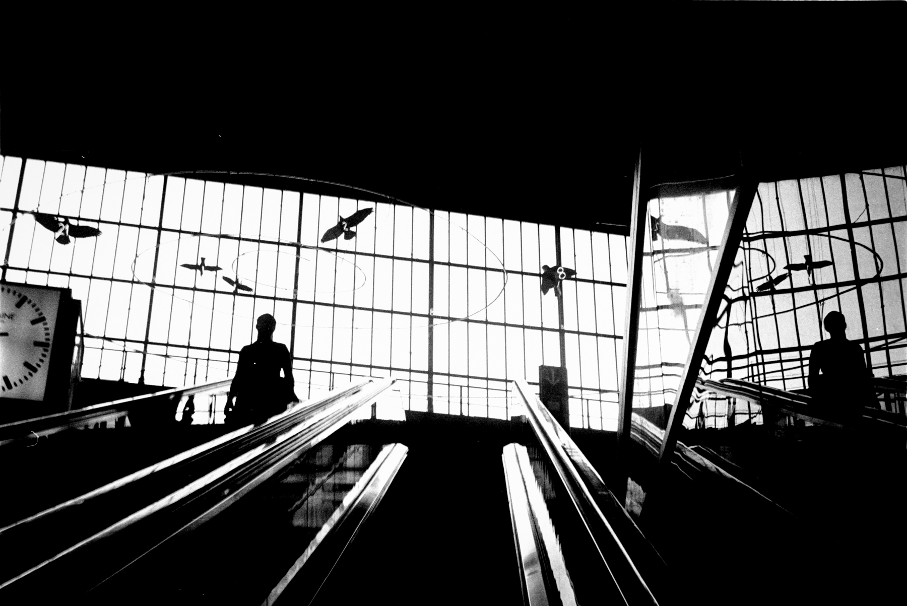 Leica - Hamburg Juni. Analog Leica Berlin#. 12.jpg