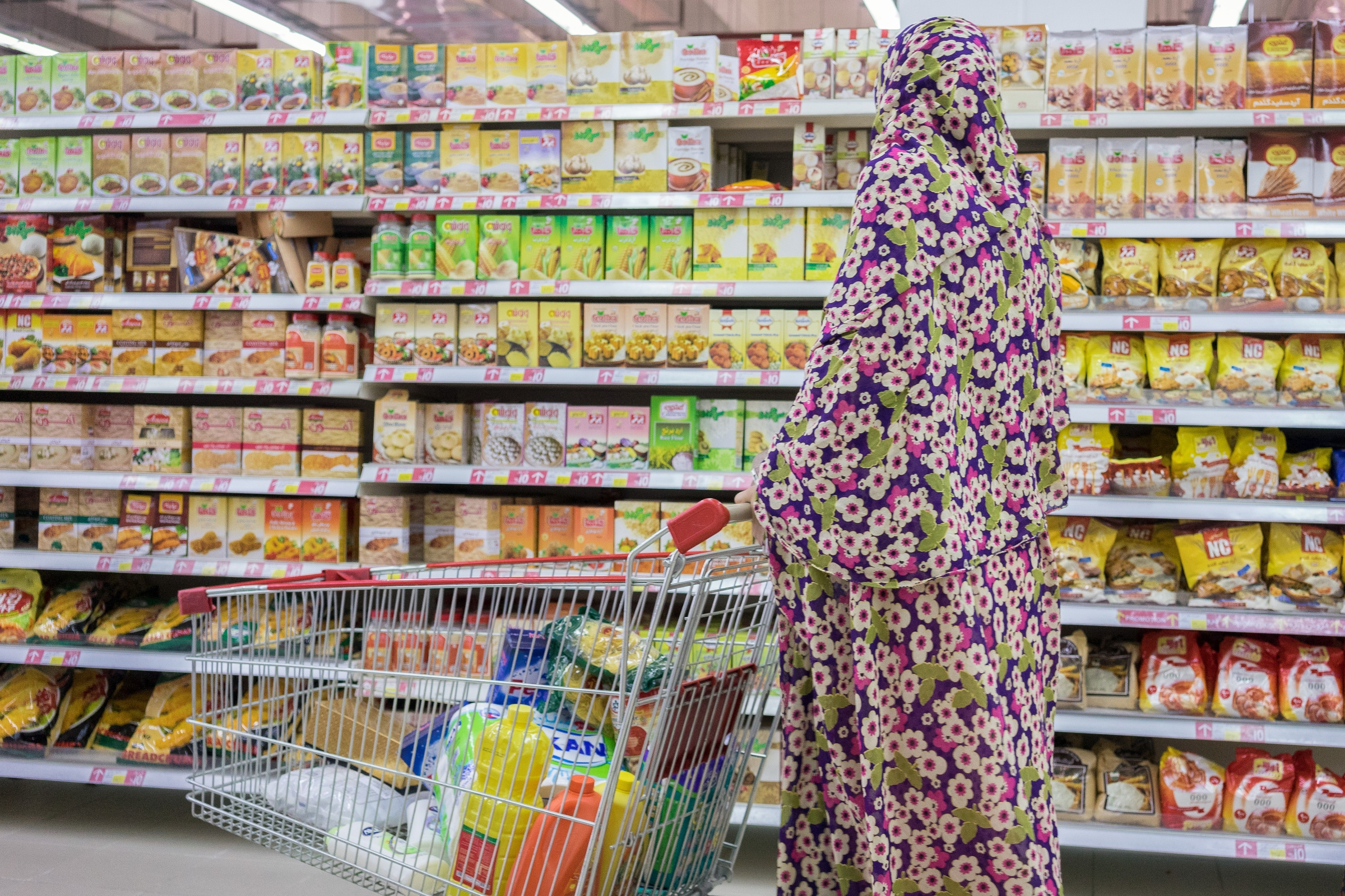 A woman shops at Hyperstar, a highly successful hypermarket brand introduced by French firm Carrefour in partnership with Majid al Futtaim, a Dubai-based conglomerate. Hyperstar locations typically anchor larger mall developments, in this case the Persian Gulf Complex, a huge mall in the outskirts of Shiraz.