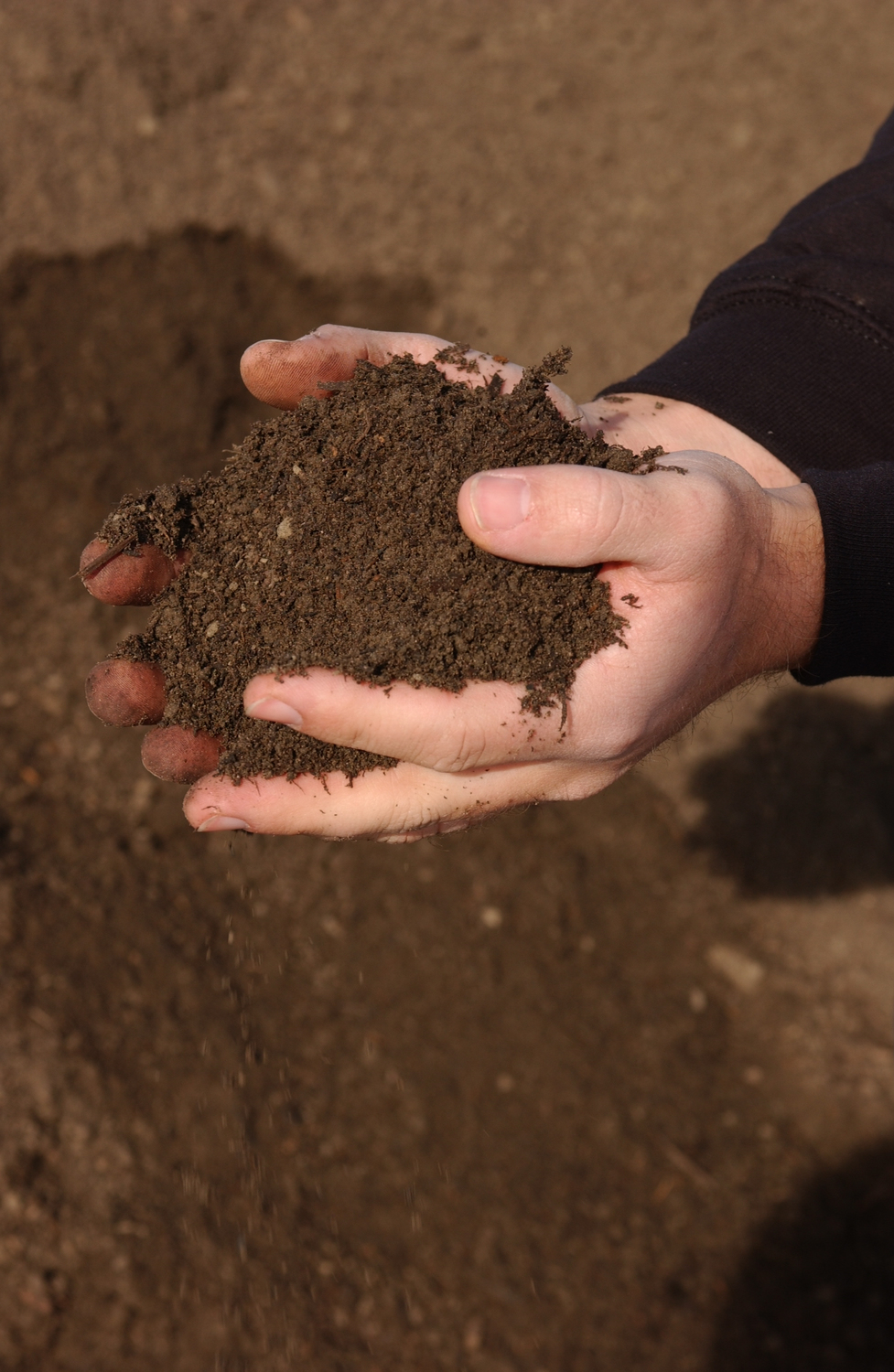 Garden soil, turf soil, or custom soil blends made to your specs.