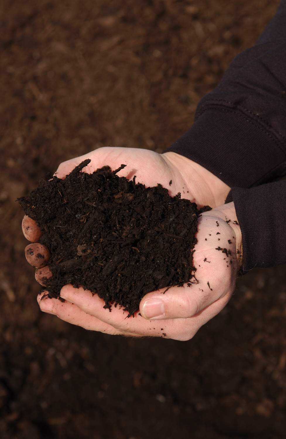 Nature Wise: 100% natural soil amendment made from organic resources.