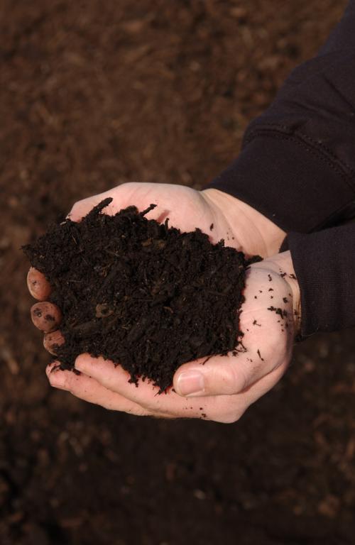 Compost »