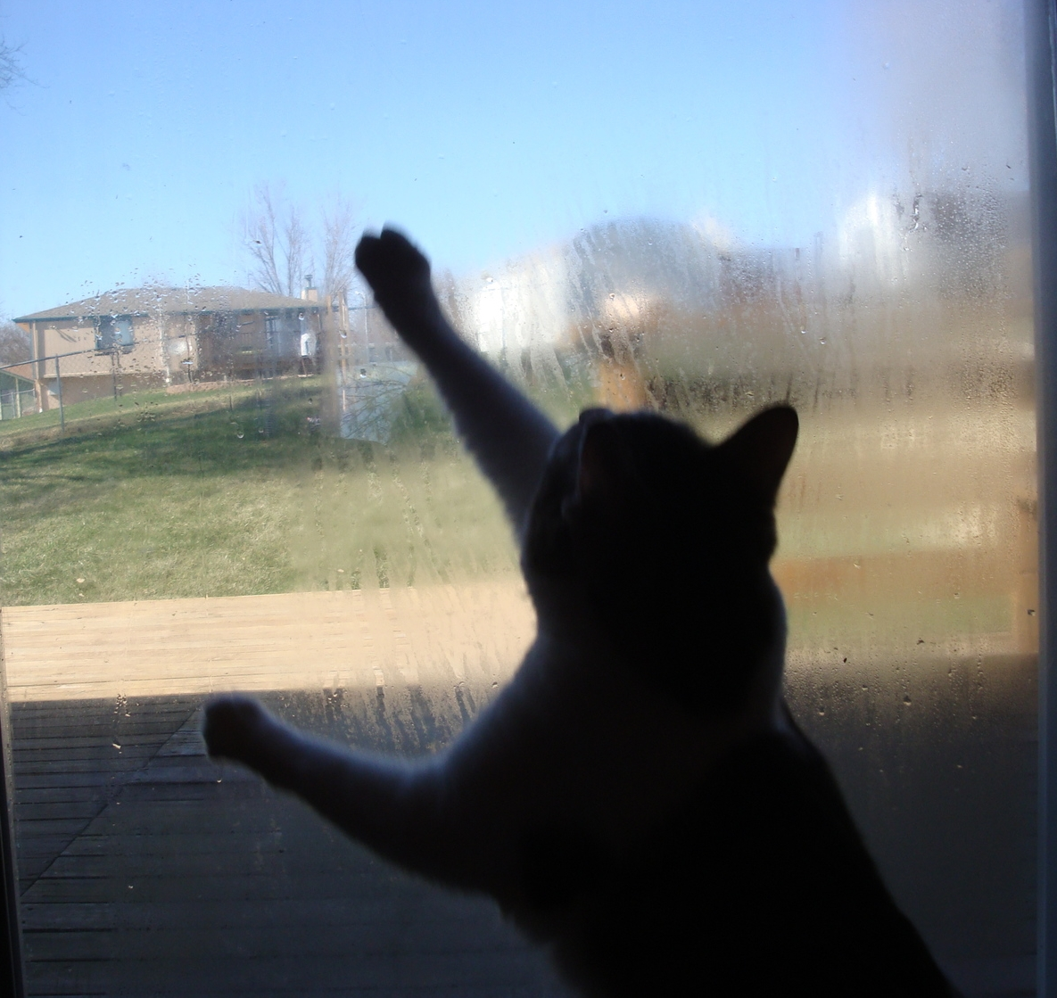 A failed seal ruins your view. Call us for an estimate on thermal pane replacement.