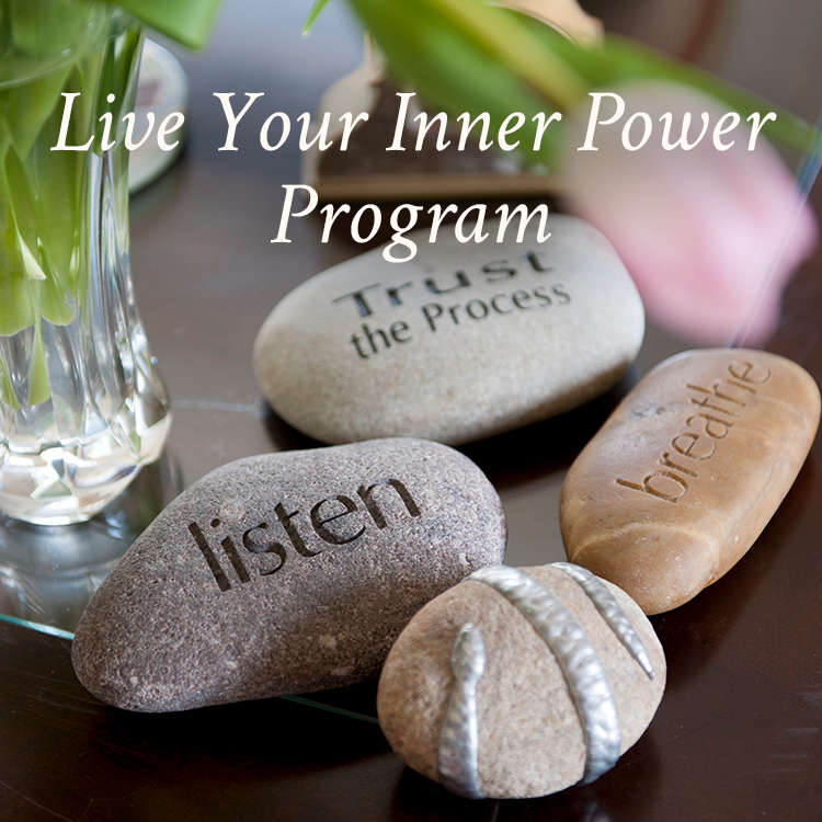 Live Your Inner Power Signature Program