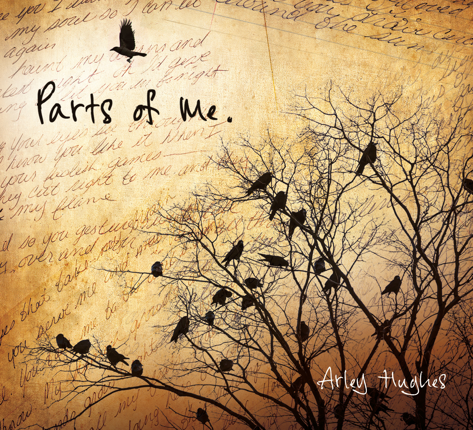 Parts of Me Album Cover created by Dean Pickup of Canada Book Design/dpictcom@telus.net     On it Dean has taken bits of my own hand written original songs and placed them on the background. Crows are present because they hold little bits of all my stories I feel very connected to this bird, so it made sense for me to have them on my first Album Cover.