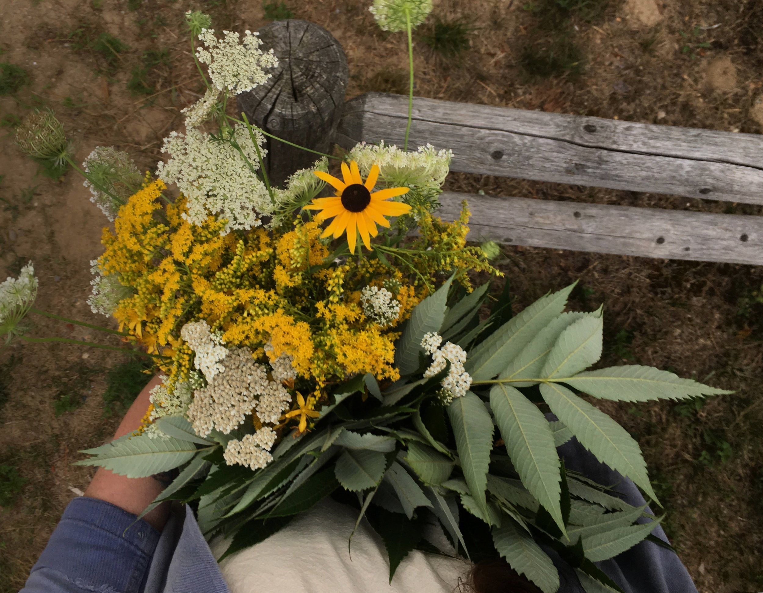 Gathered wildflowers for eco printing