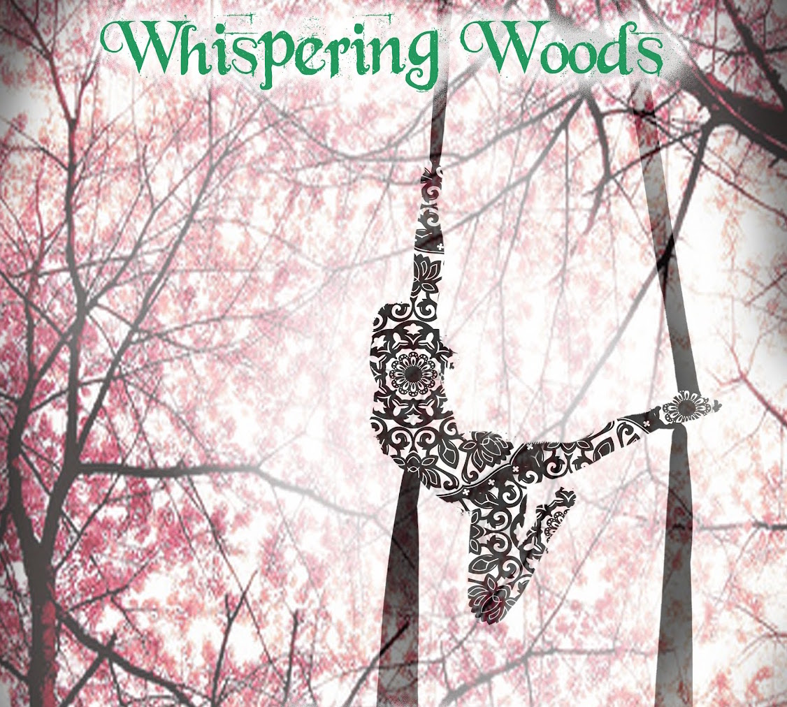whispering woods poster 2012 (mock up).jpg