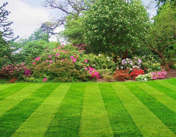 Professional Landscape services for Meridian, ID