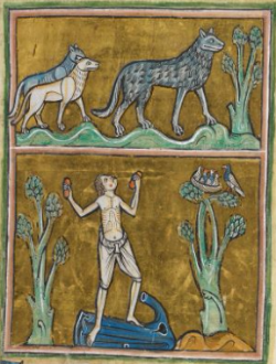 "Man with wolves, from a bestiary (c 1230-14th century); highly reminiscent of scenes from Marie de France's ""Bisclavret"". London, BL, Royal MS 12 F XIII, fol. 29r.  From BL online."