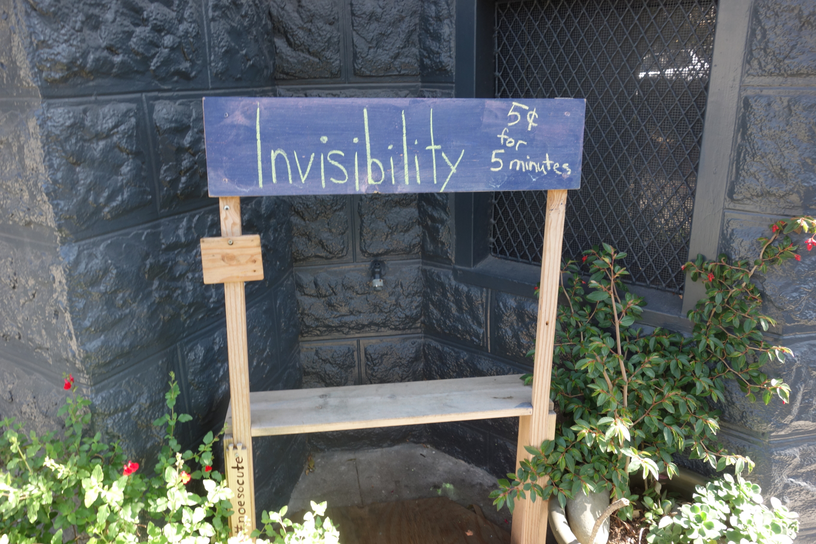 ' invisibility', by garann. Source:  Flickr.  Bench in garden, with chalkboard back support, with text saying 'Invisibility 5¢ for 5 minutes'. CC BY-SA 2.0.)