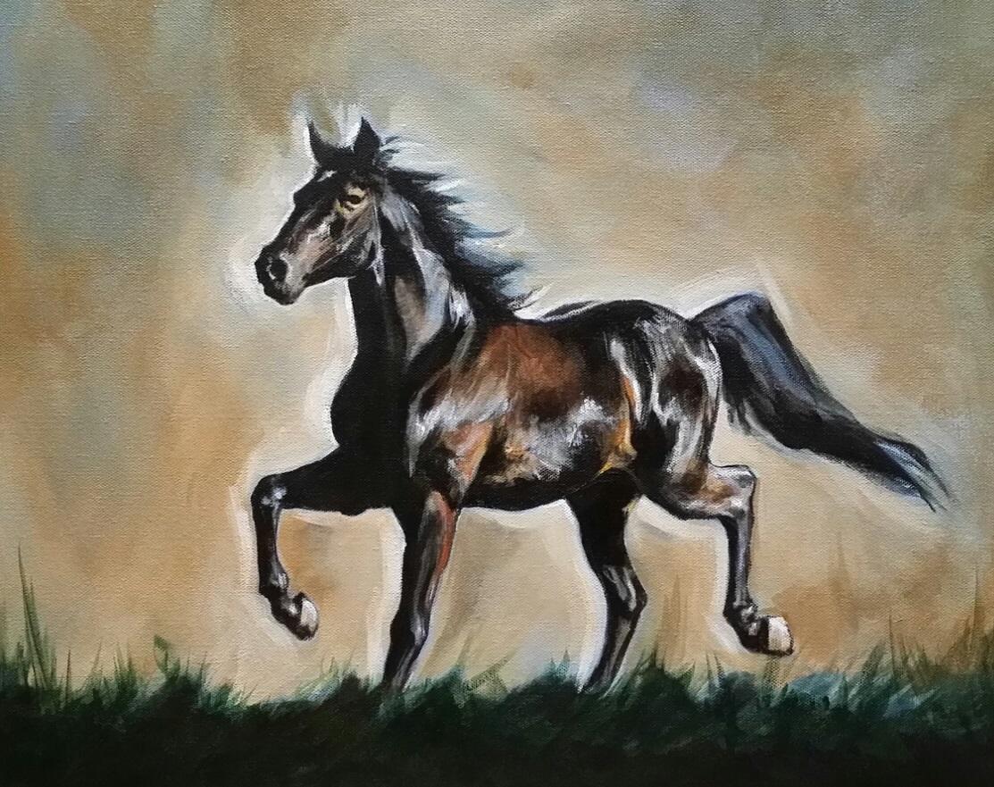 Stallion portrait.jpg
