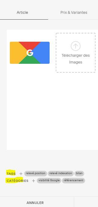 Exemples de tags et catégories dans une fiche produit Squarespace