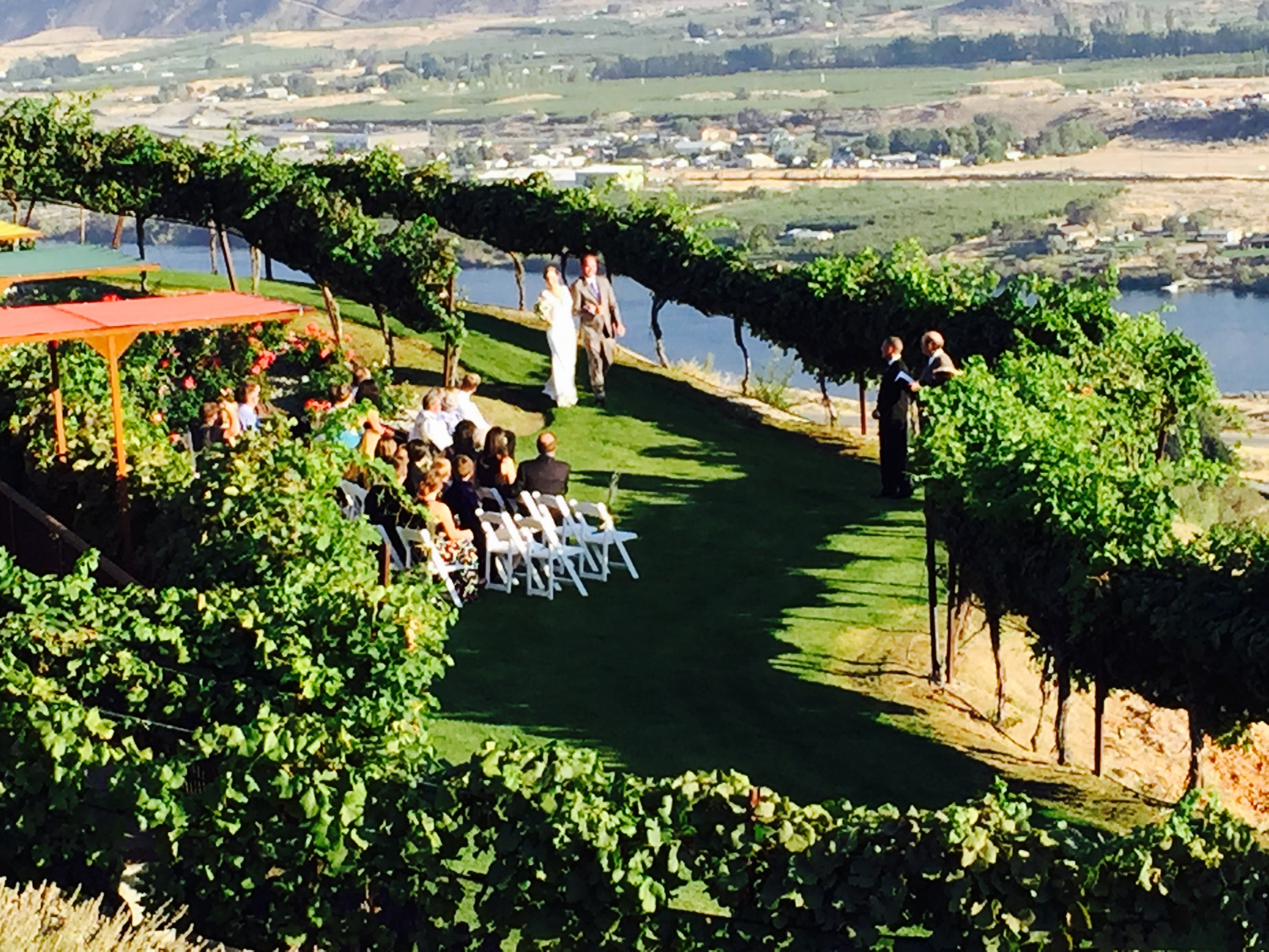 Wedding in the lower patio