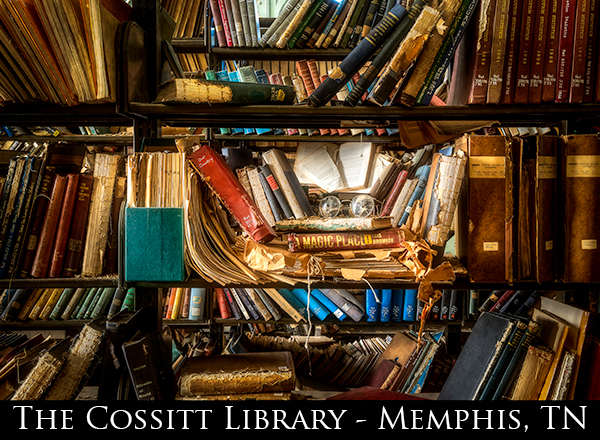 Cossitt-Library-Featured-Image-1.jpg
