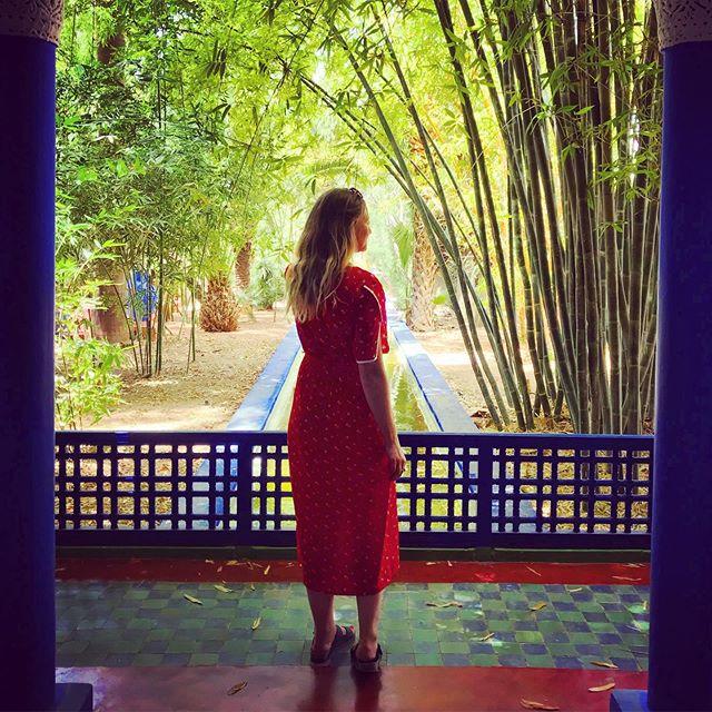 Wishing I was back here ✨#marjorellegardens . . . . #morocco #marrakech #lejardinmajorelle #marjorellejardin #marrakechgardens #ysl #yslgardens #moroccotravel #fashion #sundress #dress #plantsofinstagram #oliverbonas #shotoniphone