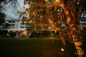Dangling Twinkle Lights