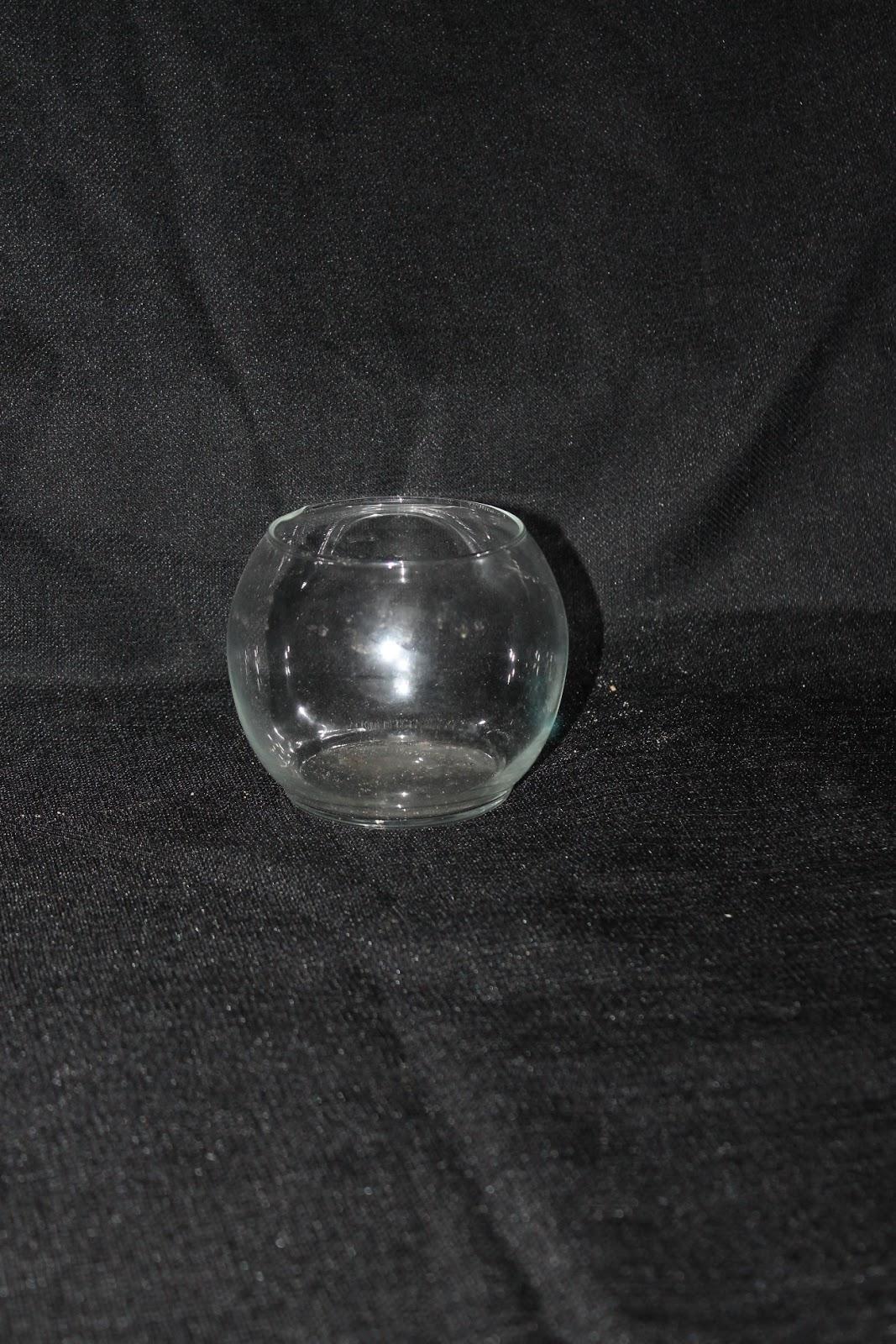 Clear Bulb Vases