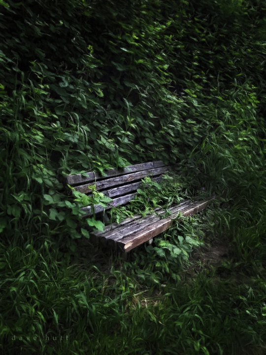 Vanishing Park Bench, Clackamas County Oregon 2018