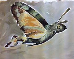 Hummingbird hawk moth sketchbook page - stage two.