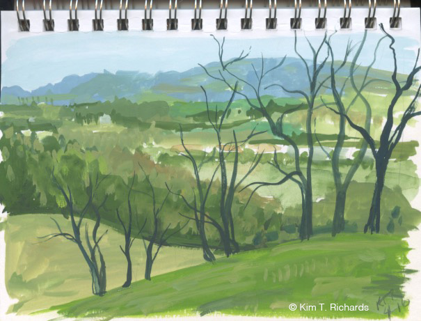 """View from a local vineyard painted in traditional colors. Fun to paint, but not really """"me."""""""