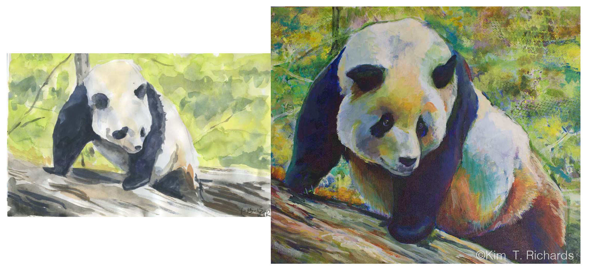 Tian Tian and the sketch that inspired it. This is one of the very first paintings I did that was inspired by a sketchbook page.