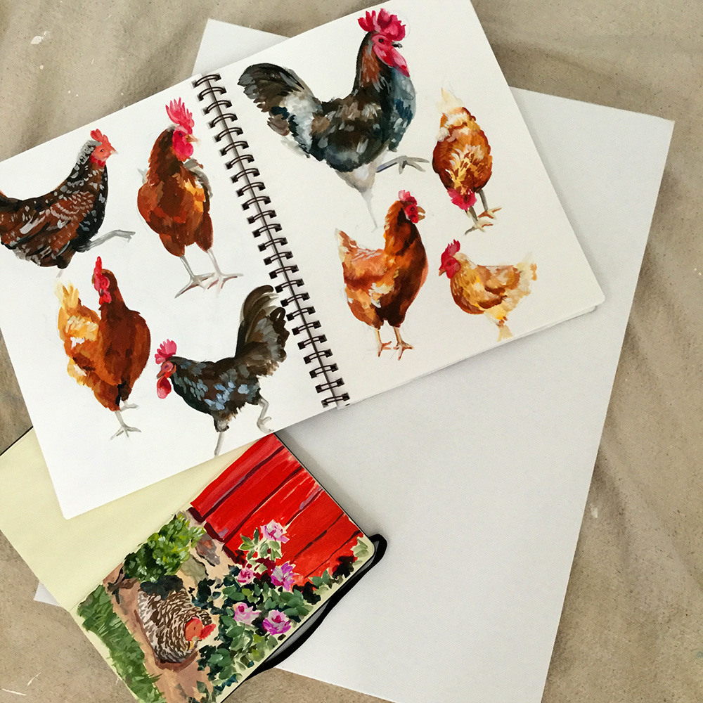 Some chicken sketchbook pages and the canvas that is waiting for them.