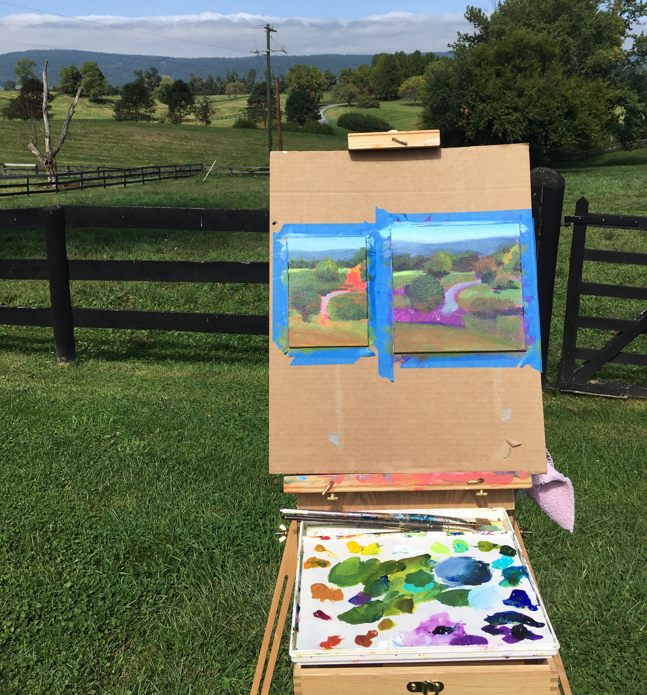Plein air painting in Faquier county VA. I often work on two paintings at the same time when painting outdoors.
