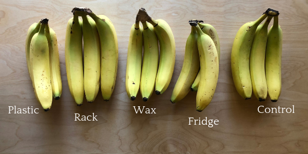4 Ways to store bananas.png