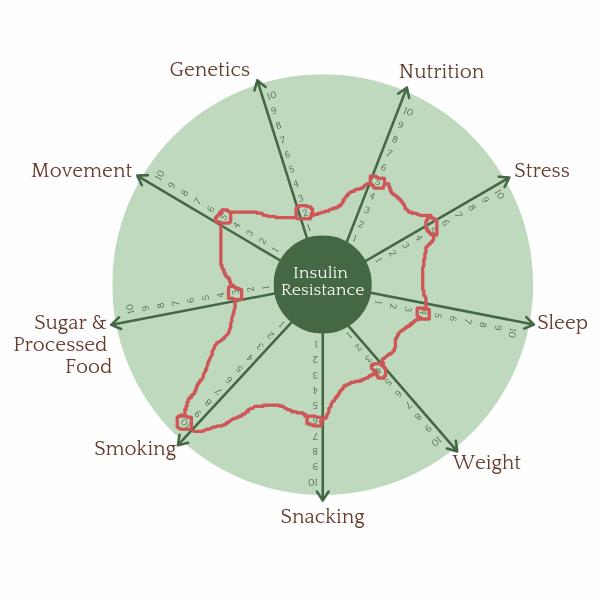 Insulin Resistance Wheel.png