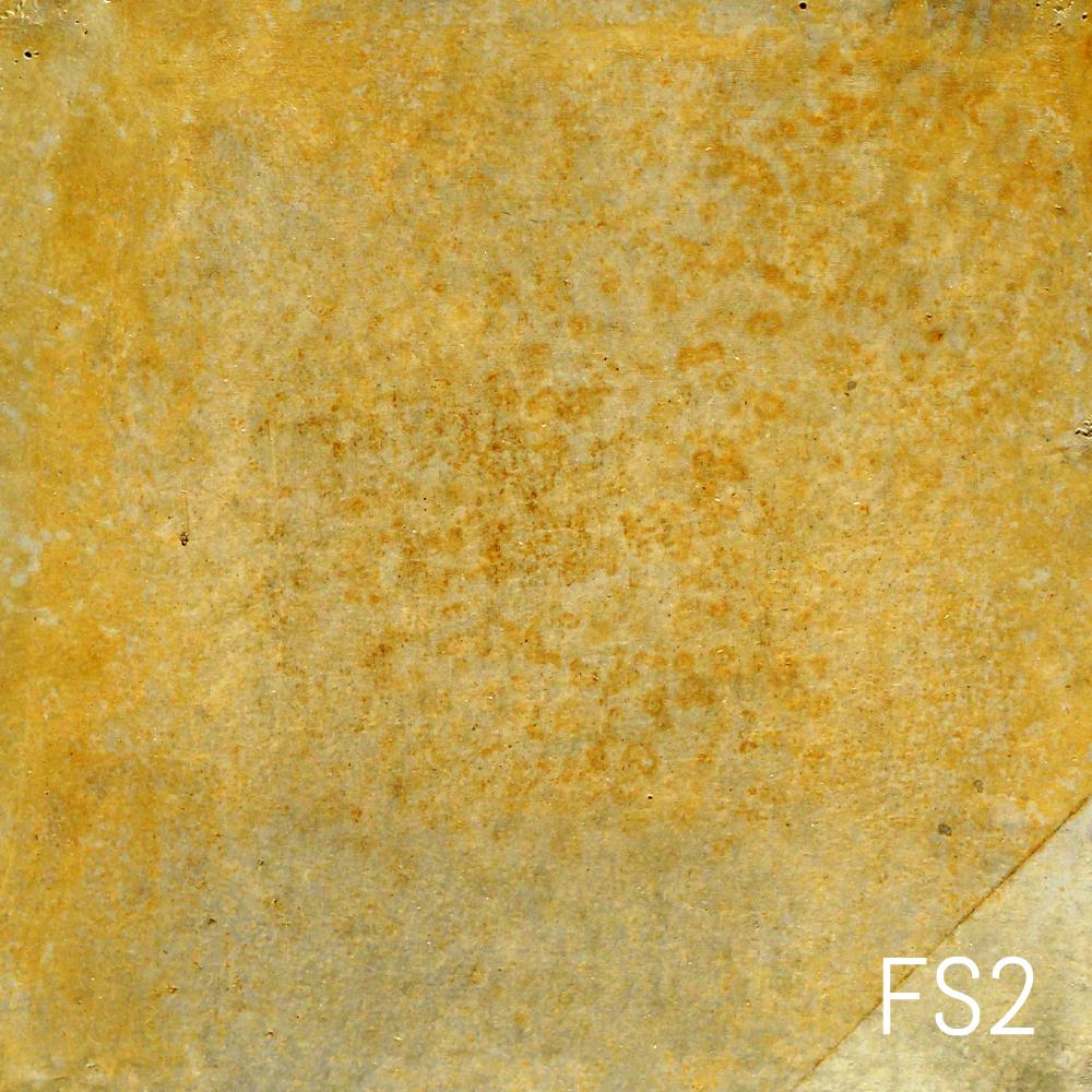 FS2.jpg