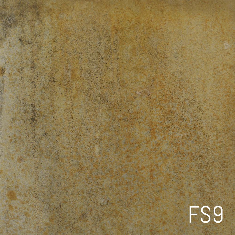 FS9.jpg