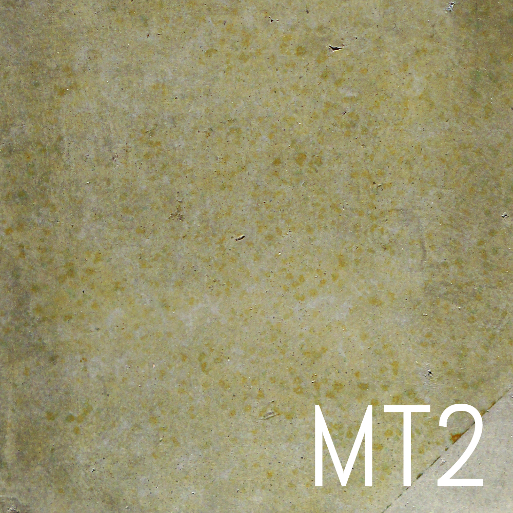 MT2.jpg