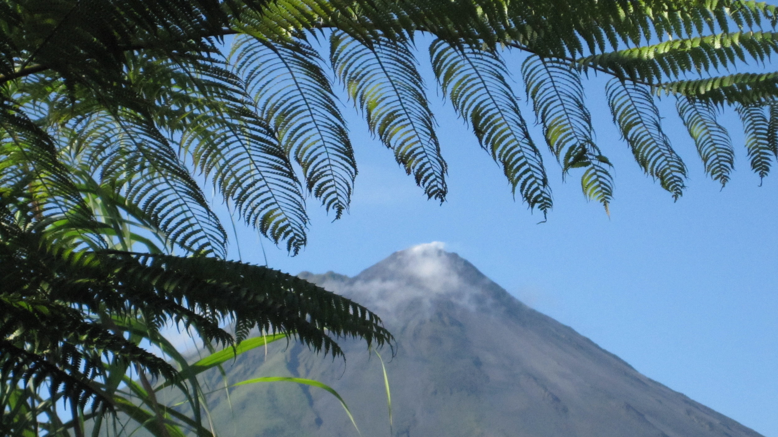 Arenal Volcano, as seen from our hotel room