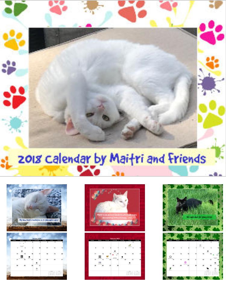Maitri 2018 Calendar.png