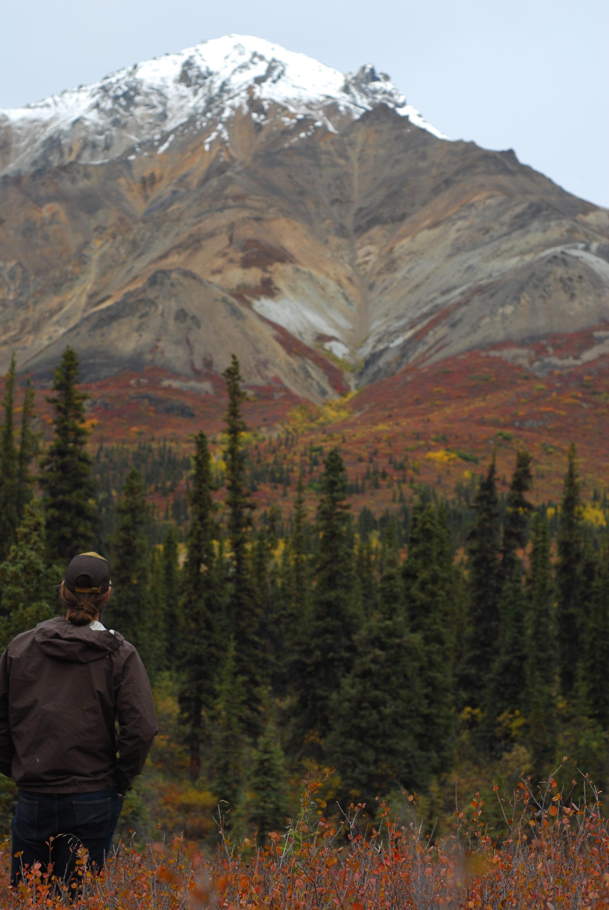 Wood River Mt. Anderson.jpg