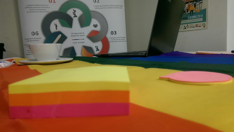 Culori și povești frumoase de la organizațiile din întreaga țară