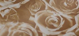roses - brown (H3AD01)
