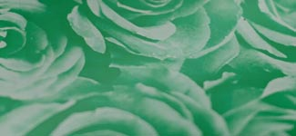 roses - green (N1AD01)