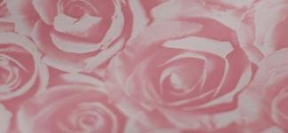 roses - pink (PEAD01)