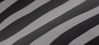 zebra - (S5ZBRA)