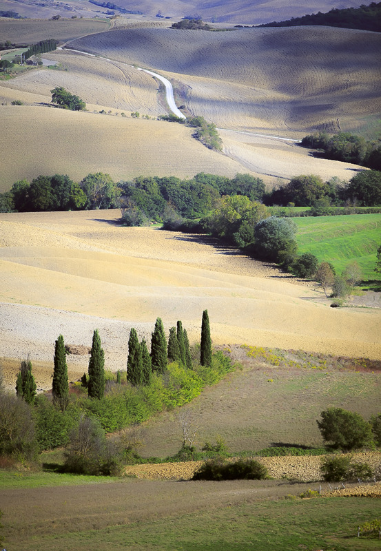 shades of tuscany  2.jpg