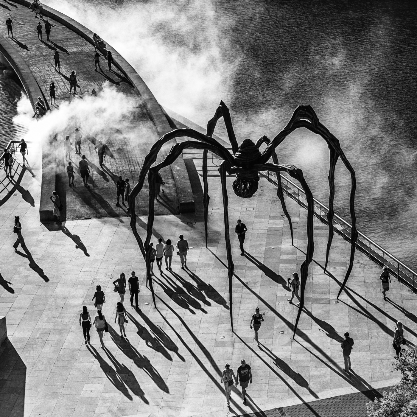 'Incy Wincy Spider' by Colin Griffiths