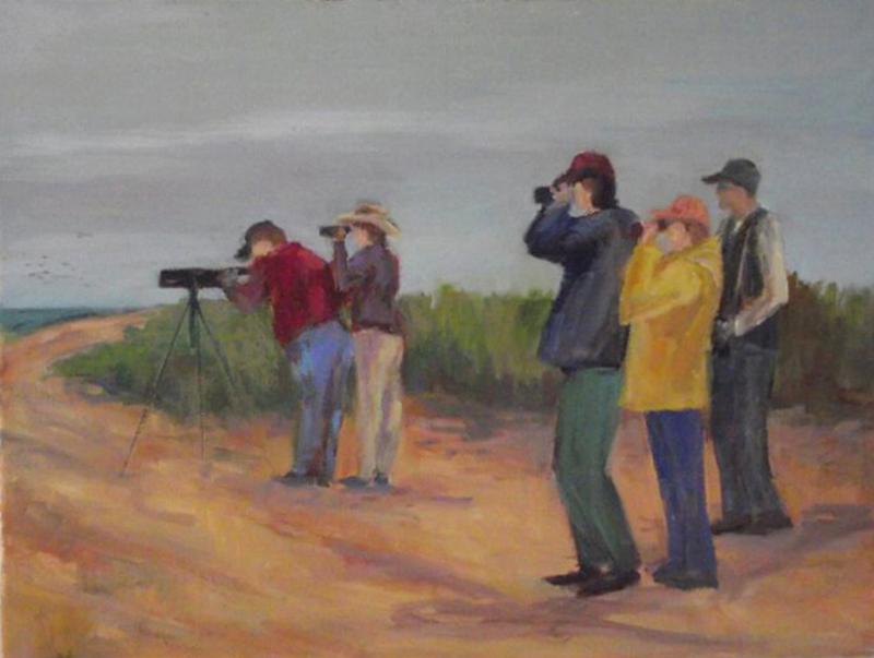 """Seeking Seabirds on Sunday 12"""" x 16"""""""