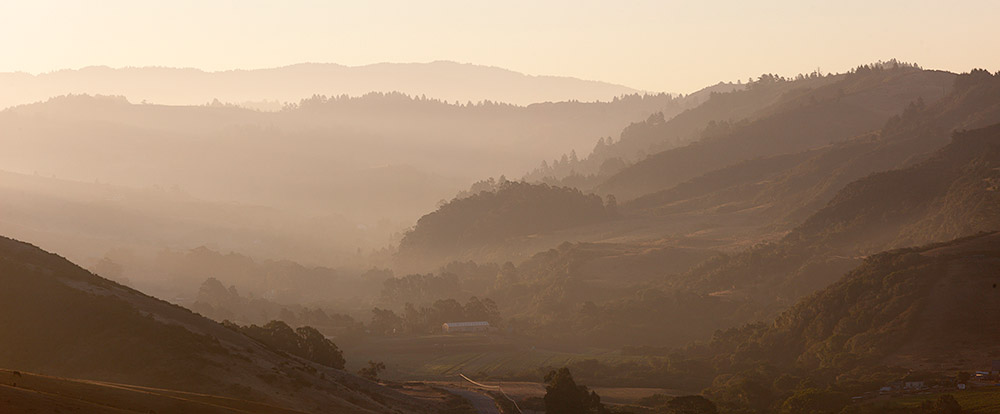 San Gregorio Valley. 2012