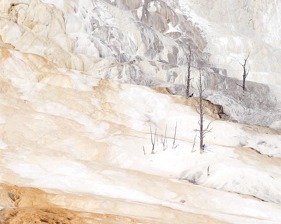 Travertine. Yellowstone