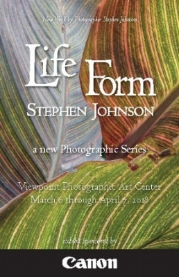 lifeform-gallery=booklet-viewpoint_Page_1.jpg