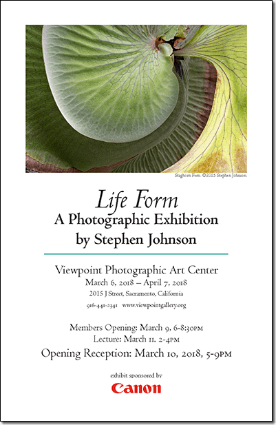 Life Form Online Gallery. Invitation pdf .