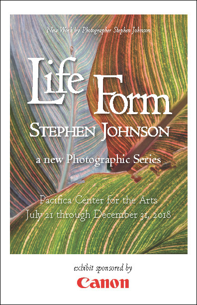 Life Form Gallery Guide pdf
