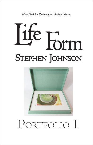 Life Form Portfolio.pdf