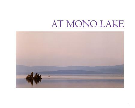 The At Mono Lake exhibition catalog 1984..